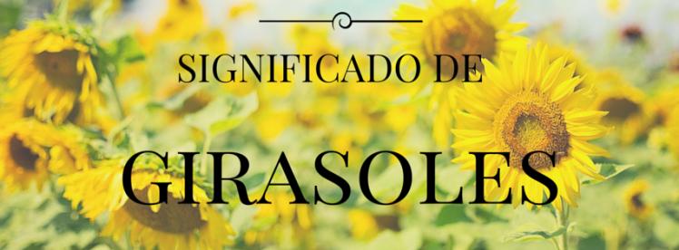 Significado De Las Flores 22 Botánica Y Herbolaria